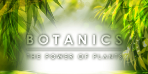 Enter for your chance to win a Botanics Shine Away Ionic Clay Mask!